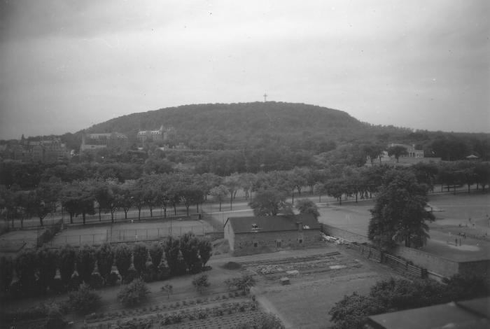 """""""Vue générale du mont Royal et des jardins de l'Hôtel-Dieu, 16 juillet 1943""""."""
