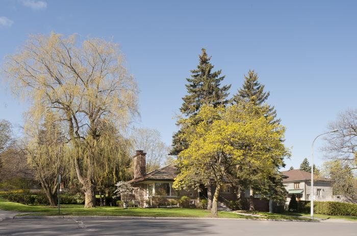 Façade principale de la maison E. Dossin située sur le boulevard Mont-Royal Ouest. Photographie.