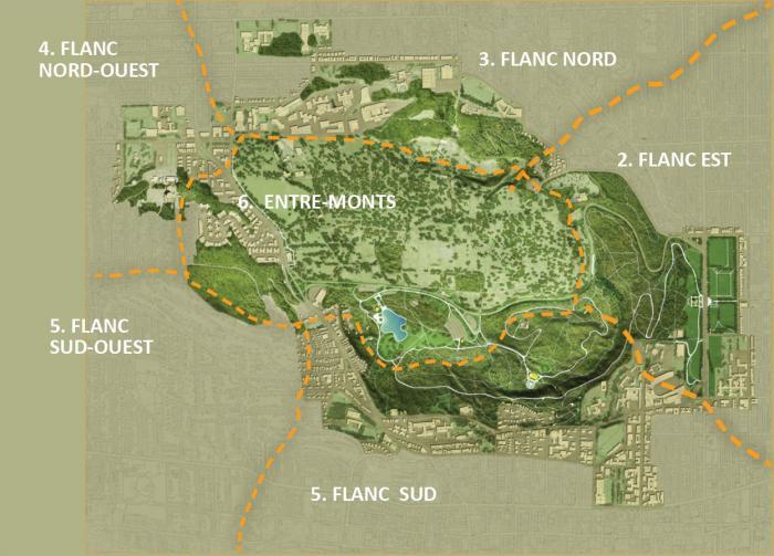 Carte délimitant les cinq flancs et l'entre-monts du mont Royal.